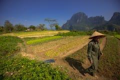 Coltivatore vietnamita Fotografia Stock Libera da Diritti