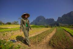 Coltivatore vietnamita Immagini Stock
