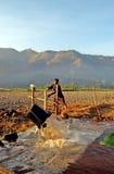 coltivatori Fotografie Stock Libere da Diritti