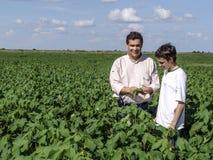 coltivatori Fotografia Stock Libera da Diritti