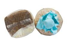 Coltivazione del fungo con segatura nel sacchetto di plastica Immagine Stock