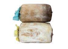 Coltivazione del fungo con segatura nel sacchetto di plastica Fotografie Stock Libere da Diritti