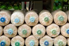 Coltivazione del fungo nell'azienda agricola domestica del fungo Immagini Stock