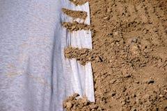 Coltivazione delle piante di plastica della tela cerata Immagini Stock Libere da Diritti