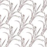Coltivi i gambi della canna da zucchero con il modello senza cuciture delle foglie royalty illustrazione gratis