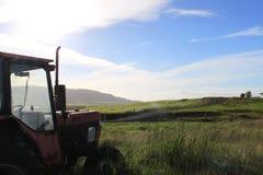 Coltivi i prati con il trattore, l'erba ed i cieli blu Immagine Stock