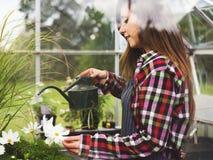 Coltivi il concetto stagionale della crescita della natura del giardino fotografia stock