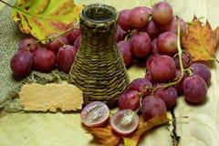 Coltivi la bottiglia e l'uva di vimini del vino con l'etichetta Fotografia Stock Libera da Diritti