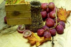 Coltivi la bottiglia e l'uva di vimini del vino con l'etichetta Immagine Stock Libera da Diritti