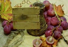 Coltivi la bottiglia e l'uva di vimini del vino con l'etichetta Fotografie Stock Libere da Diritti