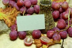 Coltivi la bottiglia e l'uva di vimini del vino con la carta Immagine Stock Libera da Diritti
