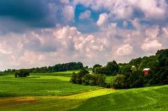 Coltivi nella campagna rurale della contea di York del sud, PA. Fotografia Stock Libera da Diritti