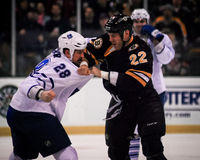 Colton Orr and Shawn Thornton fight. Leafs Colton Orr (28) and Bruins Shawn Thornton (22) fight during a game royalty free stock photography