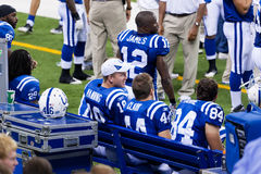 Colts bench. Indianapolis, IN - September 2, 2010 Stock Image