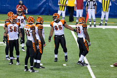 Colts-Bengals football game Royalty Free Stock Image