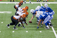 Colts-Bengals football game Stock Image