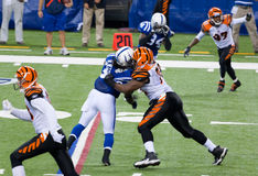 Colts-Bengals football game Royalty Free Stock Photography