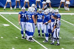 Colts-Bengals football game. Indianapolis, IN - September 2, 2010 Royalty Free Stock Image