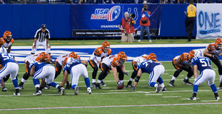 Colts-Bengals football game. Indianapolis, IN - September 2, 2010 Stock Images