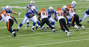 Colts-Bengals football game. Indianapolis, IN - September 2, 2010 Stock Photography