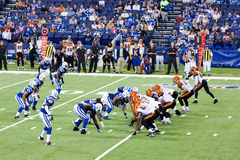 Colts-Bengals football game. Indianapolis, IN - September 2, 2010 Stock Photo