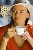 Coltura del caffè Fotografia Stock Libera da Diritti