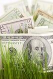 Coltura del vostro investimento Fotografie Stock Libere da Diritti