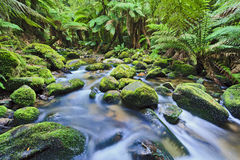 Columba creek stream horizontal Stock Photo