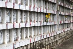 Columbarium - buddhistischer Kirchhof Allgemeine Lagerung von cinerary Urnen Lizenzfreie Stockbilder