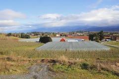 Columbia Británica del valle de Sumas Imagen de archivo
