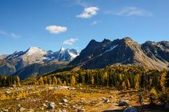Columbia Britânica enorme Canadá da passagem na queda com larício Fotos de Stock Royalty Free