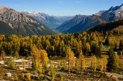 Columbia Britânica enorme Canadá da passagem na queda com larício Imagens de Stock