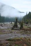 Columbia Britannica del lago Buntzen Immagini Stock
