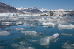 Columbia Glacier Calving Royalty Free Stock Images