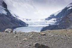 The Columbia glacier in Alberta, Canada. The Columbia glacier, one leg of the Athabasca icefield with snow coaches taking tourist onto the glacier as seen from royalty free stock photography