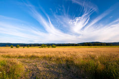 Columbia Gorge beautiful summer landscape with yellowed grass in Stock Image