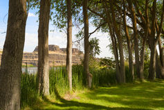 Columbia Hills State Park. A shady area in Columbia Hills park, for viewing Horsethief Butte in the Columbia River Gorge in Washington State Royalty Free Stock Image