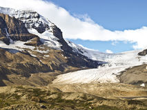 Columbia Ice field Glacier banff alberta canada Royalty Free Stock Images