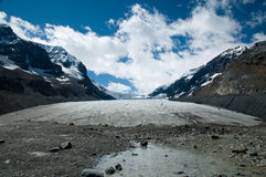 Columbia ice fields Stock Image