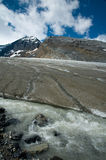 Columbia ice fields in Canadian Rockies Royalty Free Stock Images