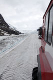 Columbia Icefield Royaltyfri Bild