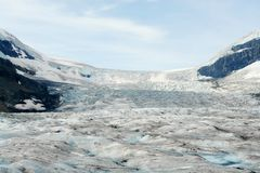 Columbia icefield royalty free stock photos