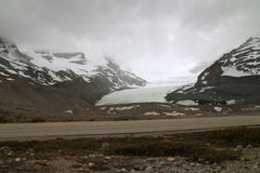 Columbia Icefield, Alberta, Canada. Stock Photos