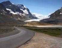 Columbia Icefield Athabasca glaciärjaspis Arkivfoto
