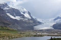Columbia Icefield i Jasper National Park Fotografering för Bildbyråer
