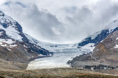 Columbia Icefield 2016 - Jasper National Park, Alberta, Kanada Royaltyfri Bild