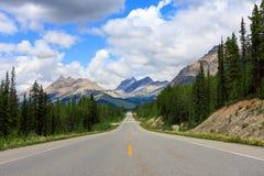 Columbia Icefield, Jasper Nationalpark, Kanada Arkivbilder