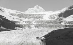 Columbia Icefield landskap i Alberta Kanada Arkivbilder