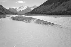 Columbia Icefield landskap i Alberta Kanada Royaltyfria Foton