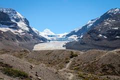 Columbia Icefield och glaciär, Icefields gångalléJasper National park- Alberta Kanada Royaltyfri Bild